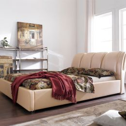DSW006  Leather Bed