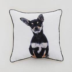 SH01-1011  Cushion