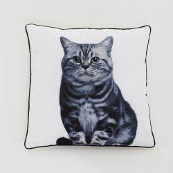 SH01-1016  Cushion