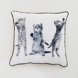 SH01-1018  Cushion