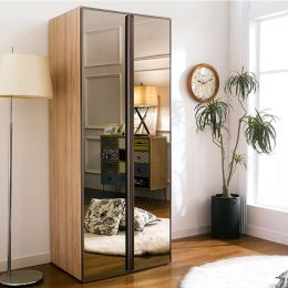WD-150  Single Closet w/ Mirror Door