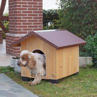 Domus-Medium  Pinewood Kennels