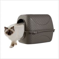19120  Cat Toilet