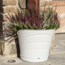 30512  Tulipano Pot