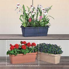 30646  Flower Box Paglia