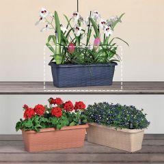 30647  Flower Box Paglia