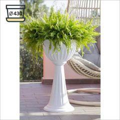 31890  Alba Flower Cup-43