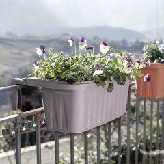 31217 Rondine Balcony Box