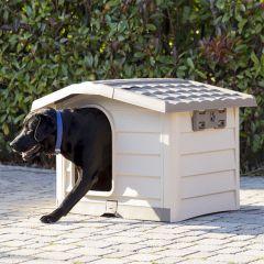 19101  Large Dog House